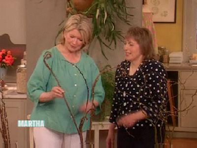 Click to view Bonnie Gale on Martha Stewart Show