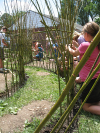 "Participants weaving willows in their ""Fedge"""